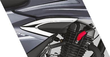 Planet Honda - Shine BS6 Premium_chrome_stroke_onsidecover